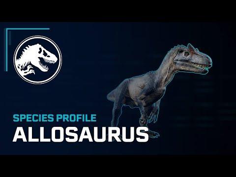 Species Profile - Allosaurus