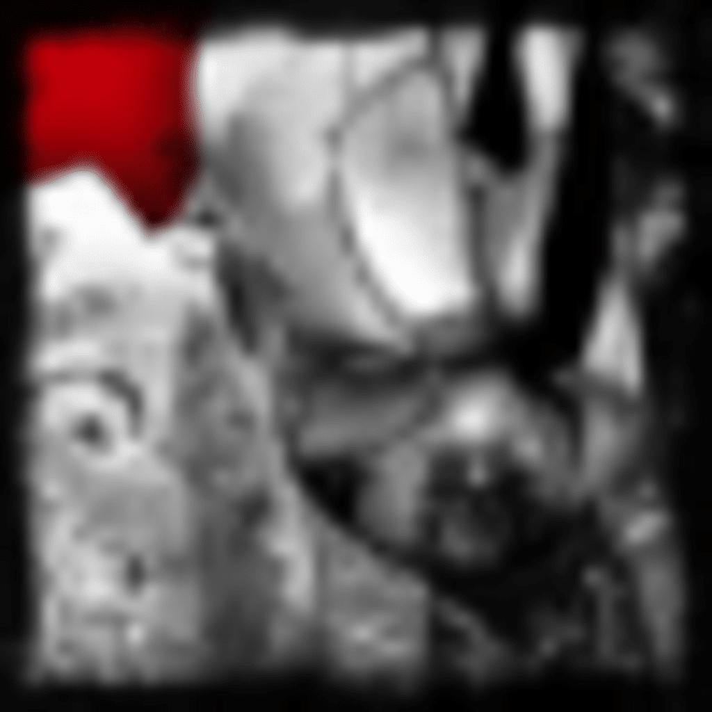 DMC Trophäen (7)
