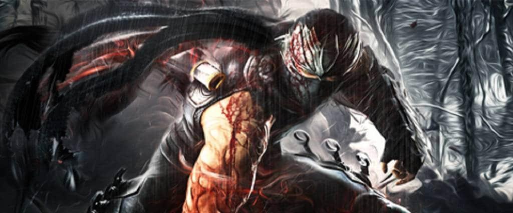 Ninja Gaiden Banner