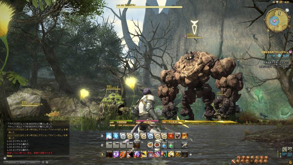 a realm reborn interface