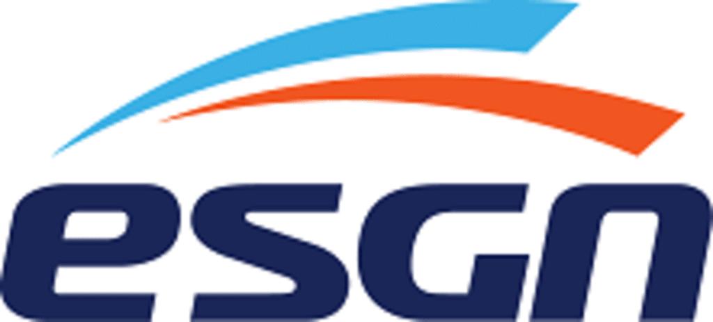 esgn_logo