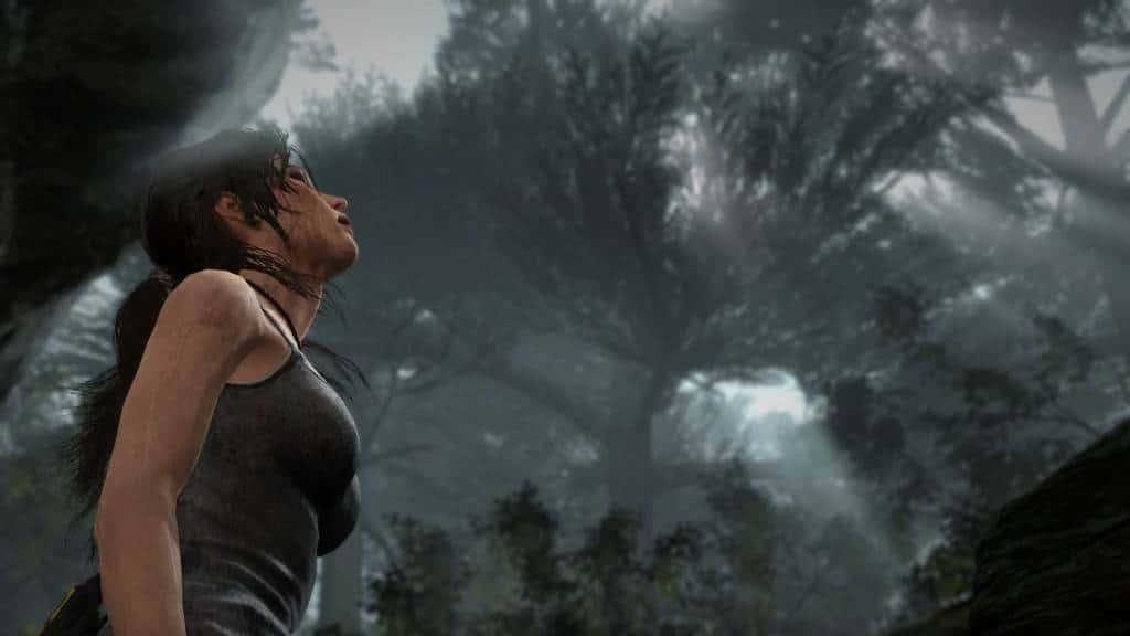 Tomb Raider Definitive Edition (3)