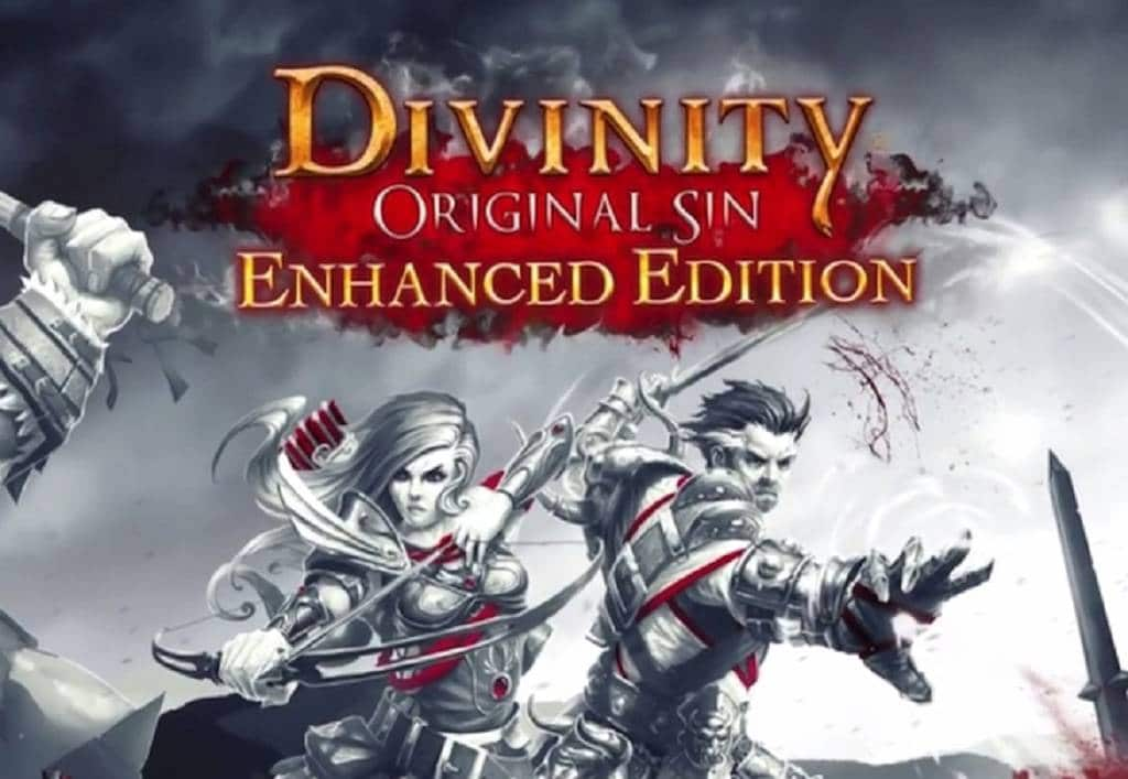 Divinity Original Sin - Enhanced Edition Bild 2