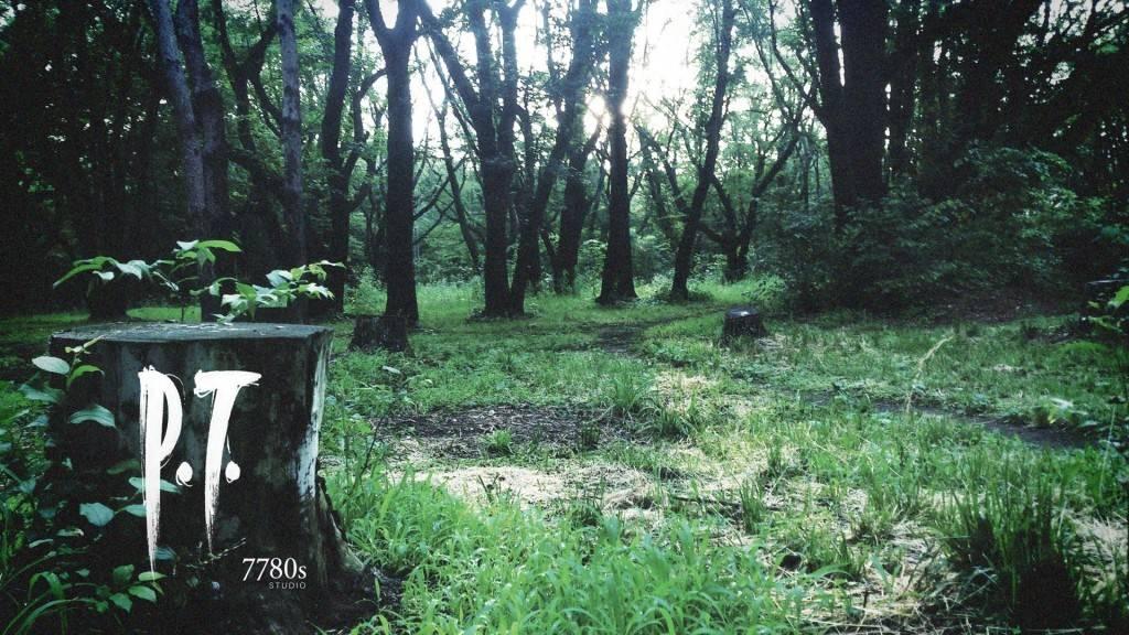 P.T. (Silent Hills)