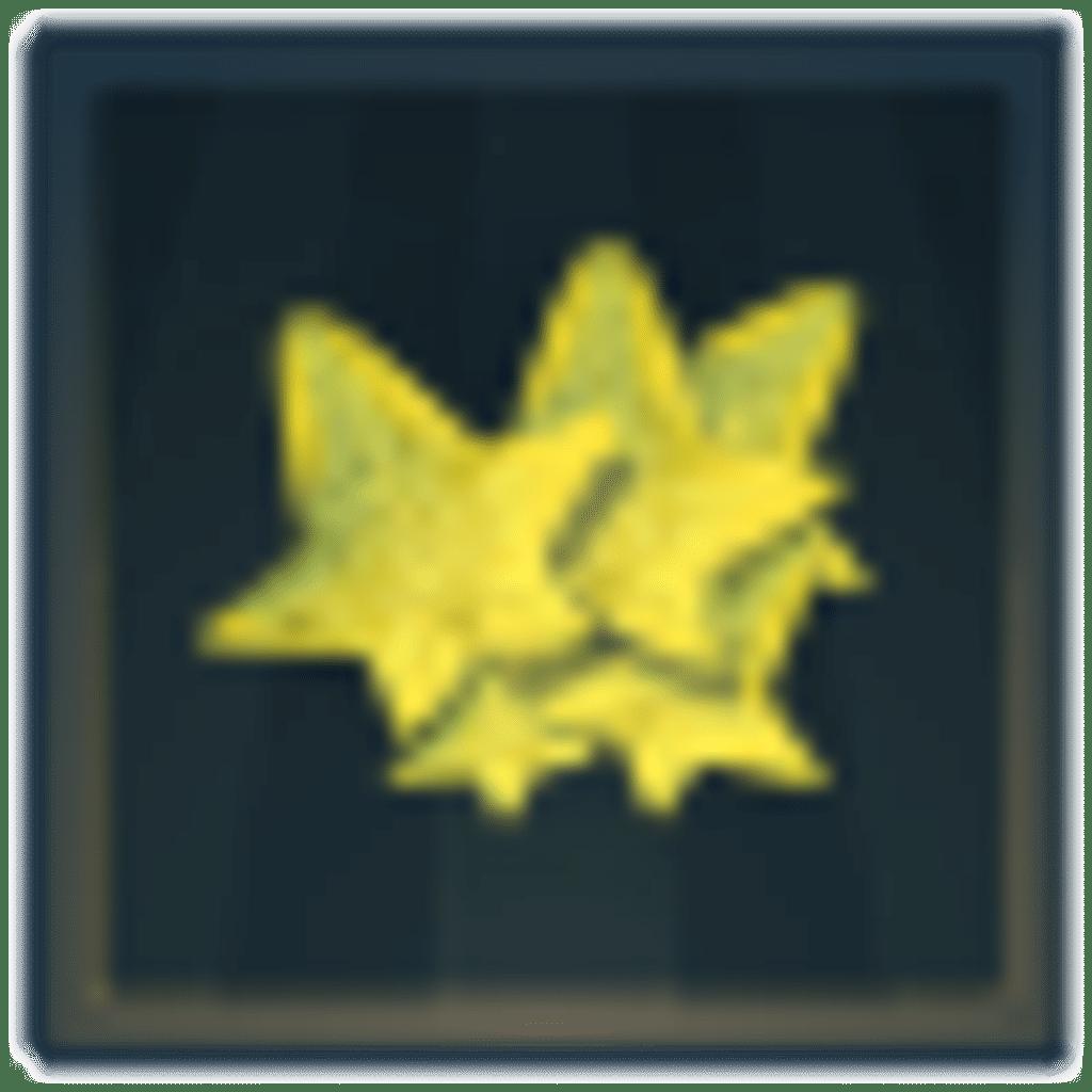 Siege Trophäe 32