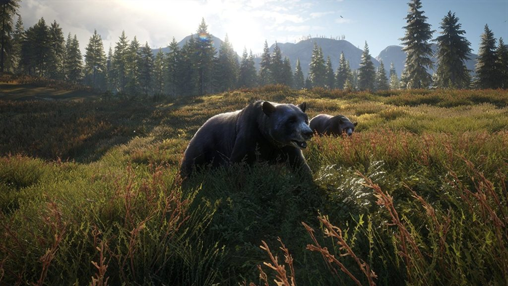 theHunter Call of the Wild - Konsolen erhalten DLC