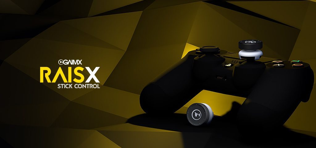 RAISX Stick Control